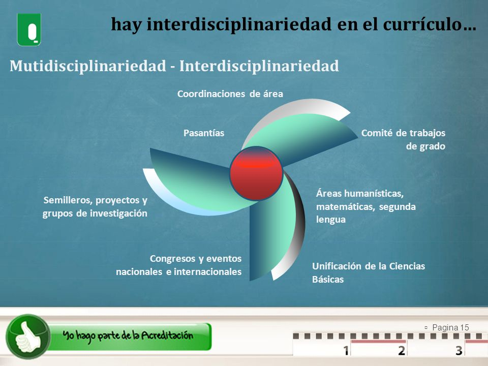hay interdisciplinariedad en el currículo…
