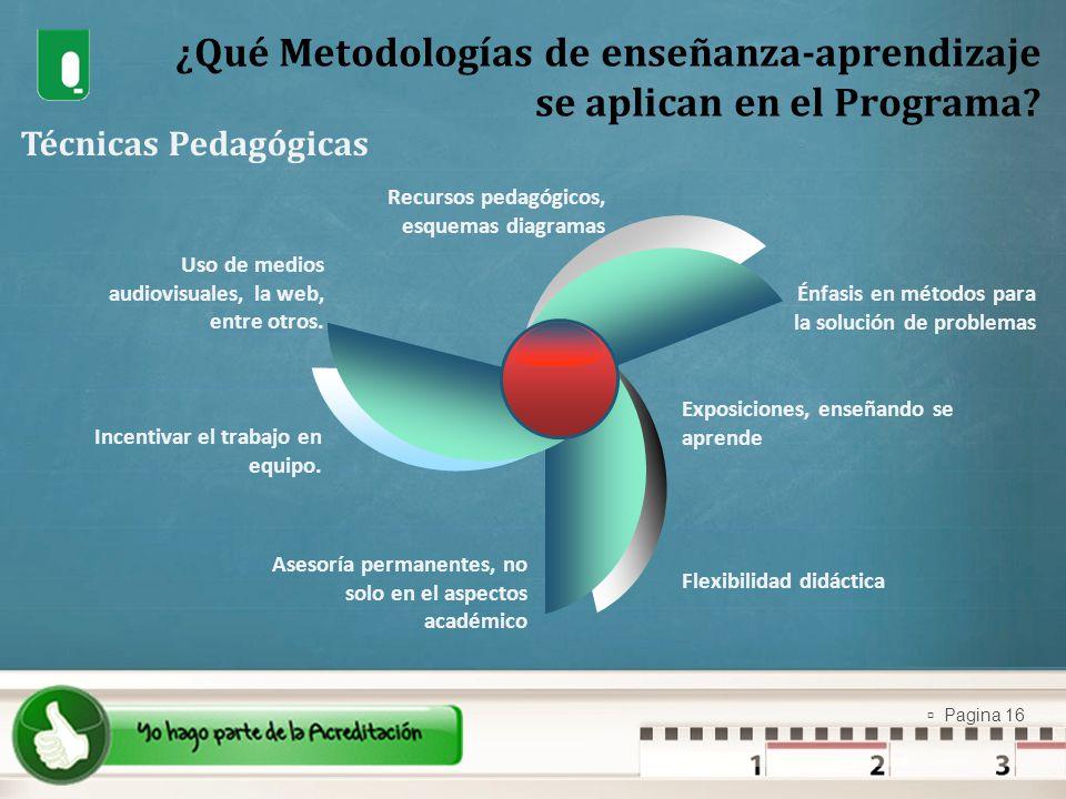 ¿Qué Metodologías de enseñanza-aprendizaje se aplican en el Programa