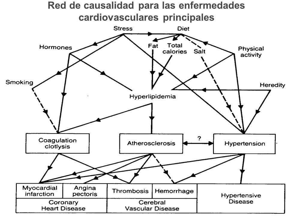 Red de causalidad para las enfermedades cardiovasculares principales