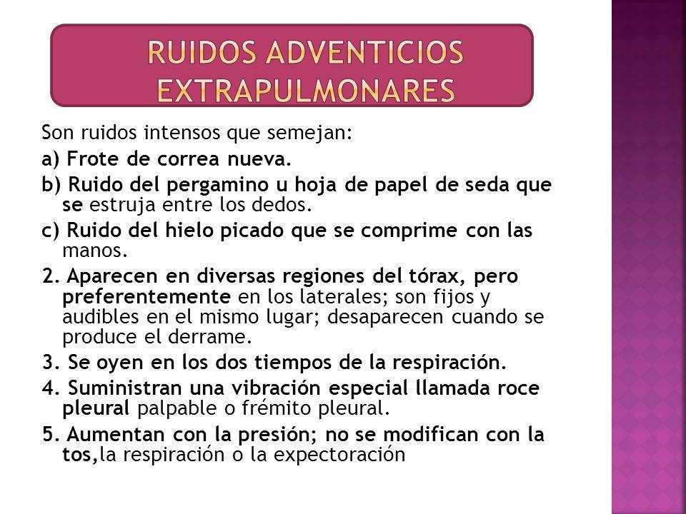 Ruidos adventicios extrapulmonares