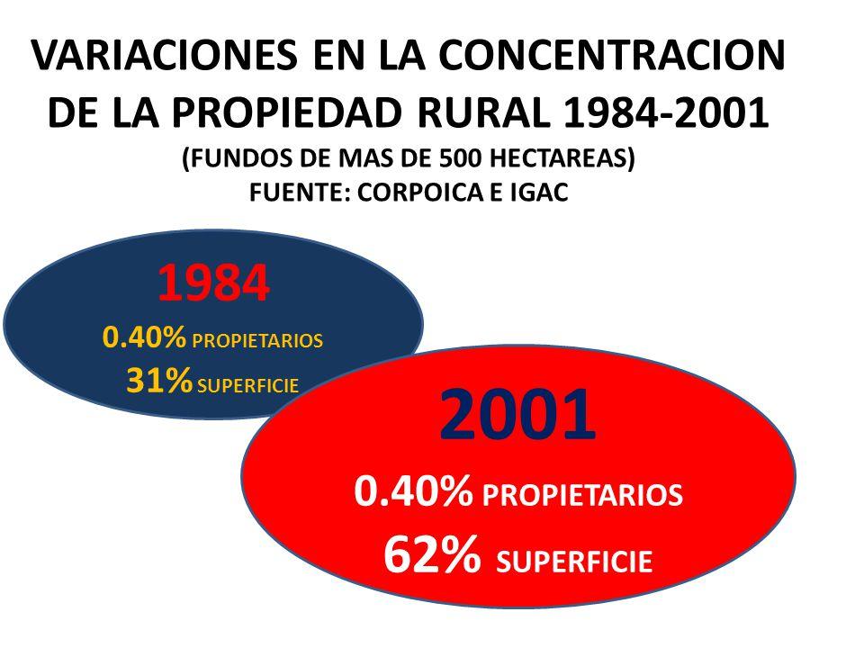 VARIACIONES EN LA CONCENTRACION DE LA PROPIEDAD RURAL 1984-2001