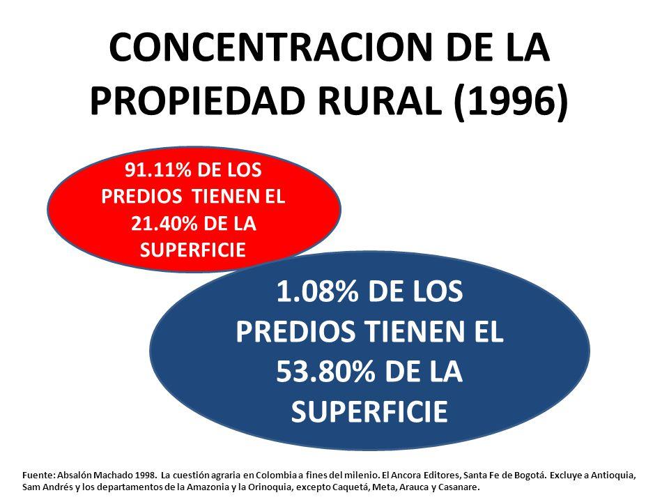CONCENTRACION DE LA PROPIEDAD RURAL (1996)