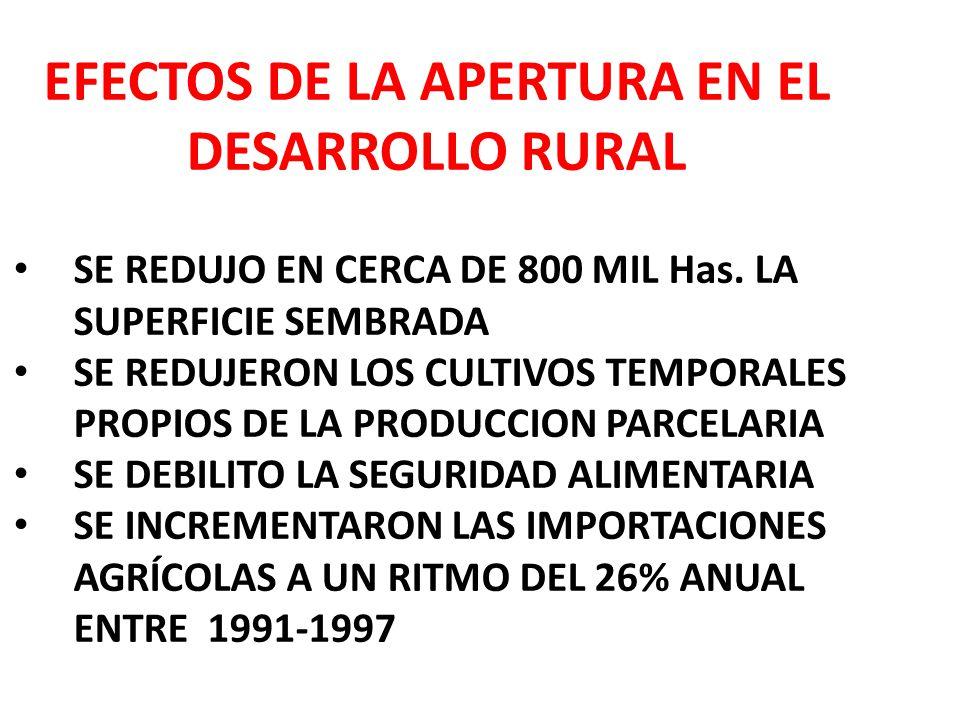 EFECTOS DE LA APERTURA EN EL DESARROLLO RURAL