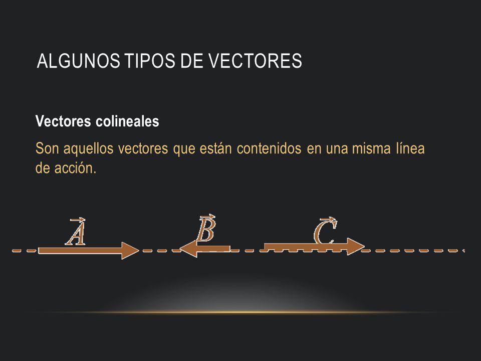 Algunos tipos de vectores
