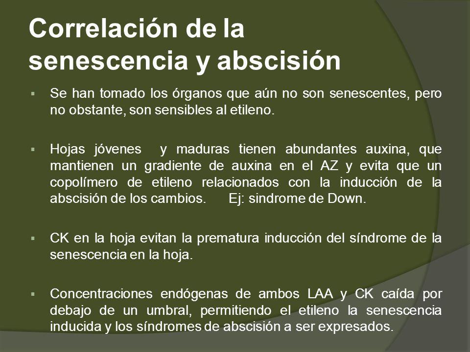 Correlación de la senescencia y abscisión