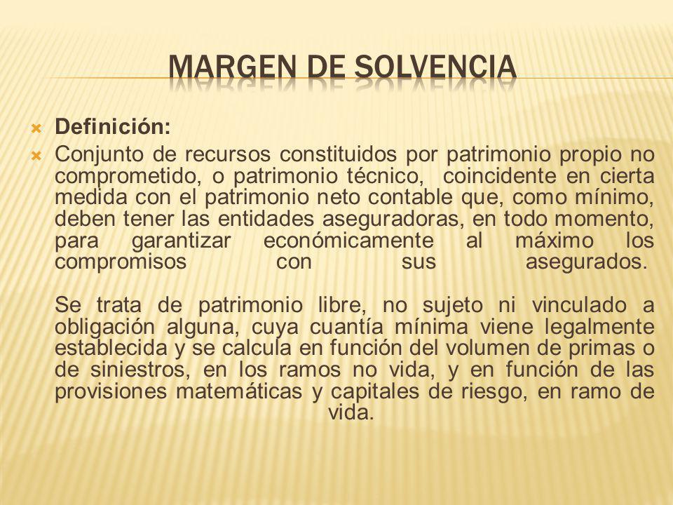 Margen de Solvencia Definición:
