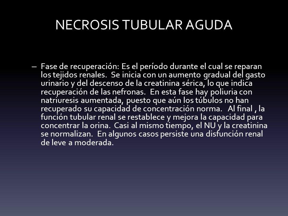 NECROSIS TUBULAR AGUDA