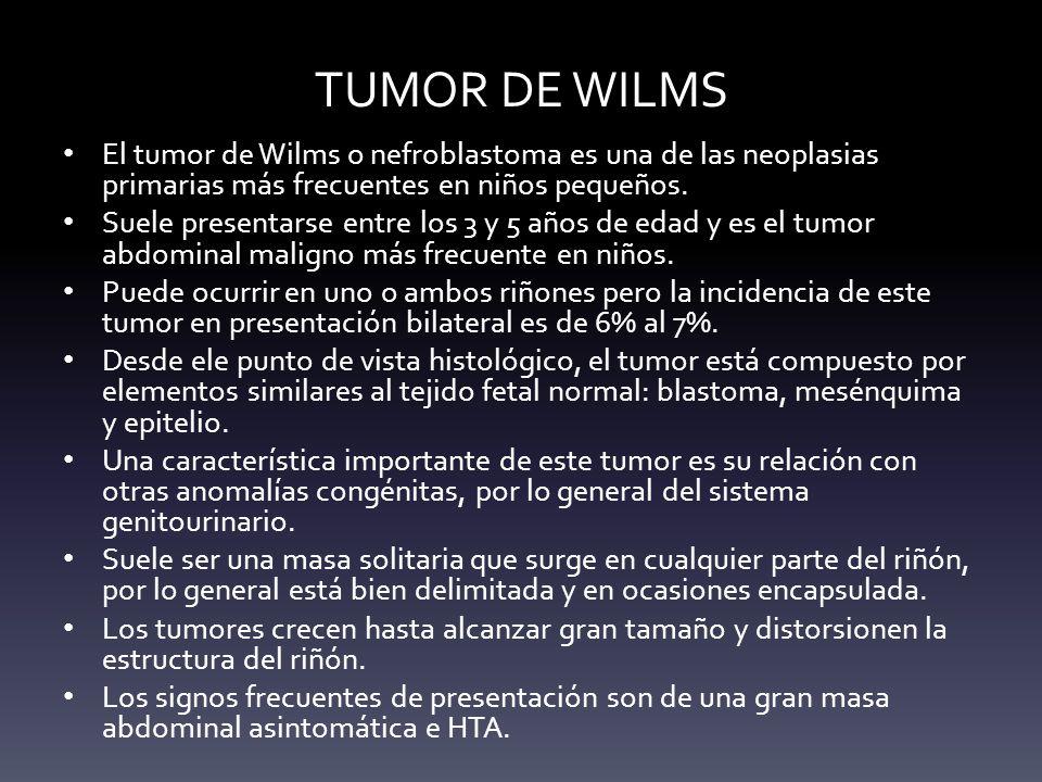 TUMOR DE WILMS El tumor de Wilms o nefroblastoma es una de las neoplasias primarias más frecuentes en niños pequeños.