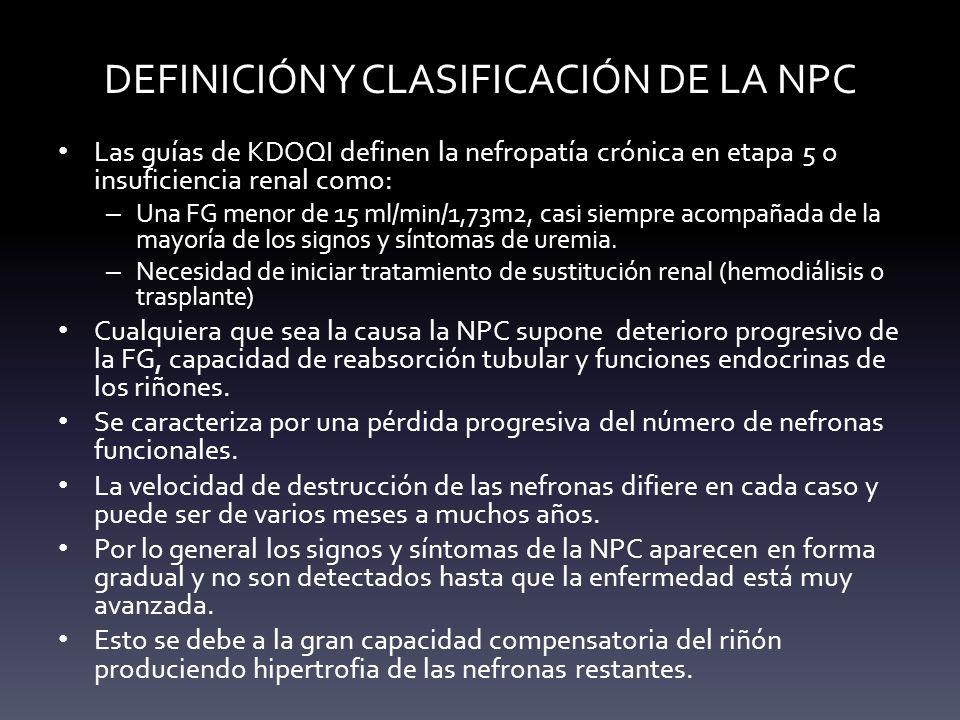 DEFINICIÓN Y CLASIFICACIÓN DE LA NPC