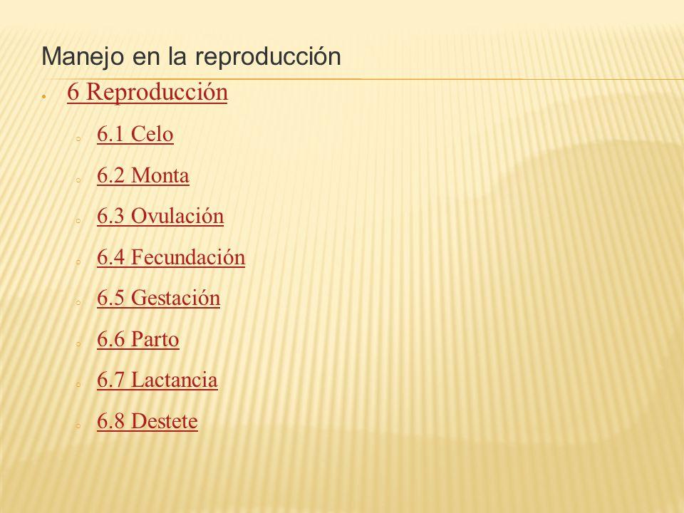 Manejo en la reproducción 6 Reproducción