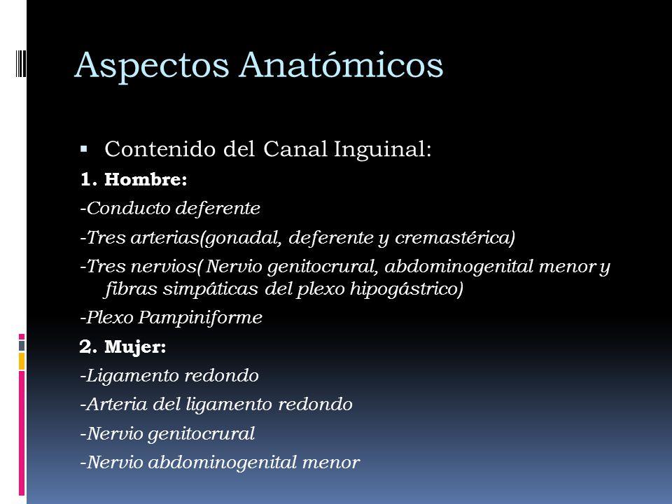 Aspectos Anatómicos Contenido del Canal Inguinal: 1. Hombre: