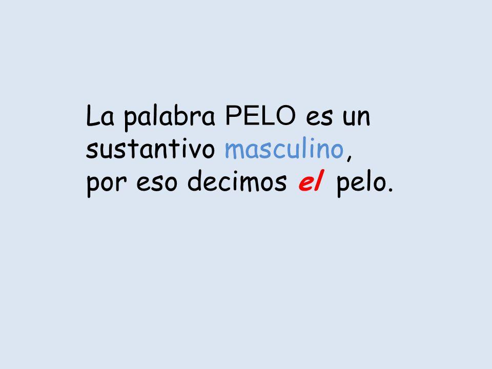 La palabra PELO es un sustantivo masculino, por eso decimos el pelo.