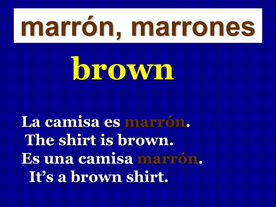 brown marrón, marrones La camisa es marrón. The shirt is brown.