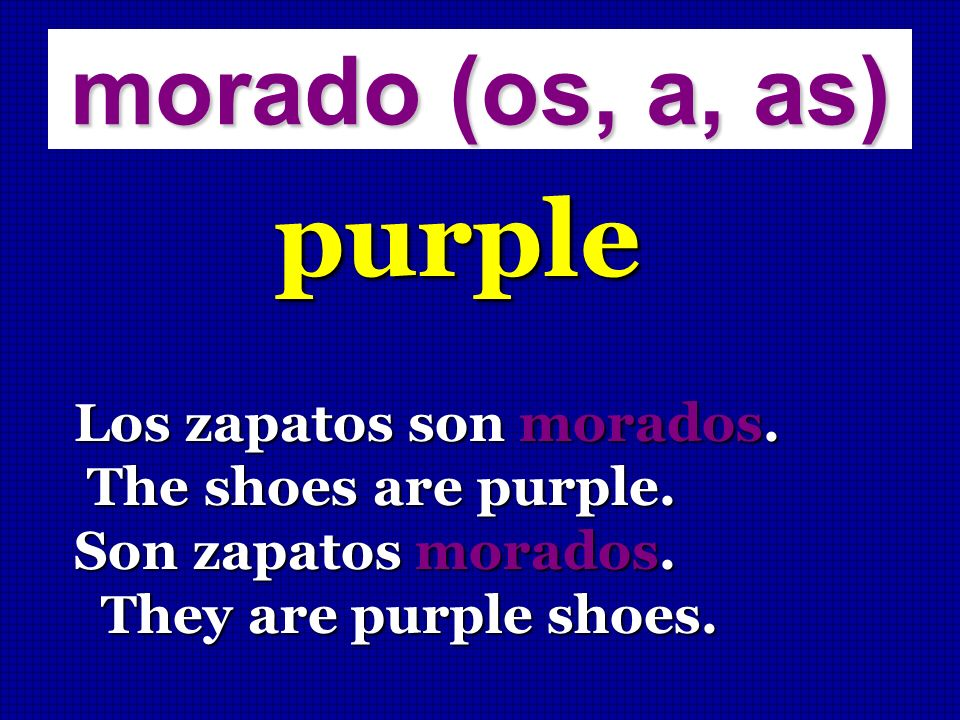 purple morado (os, a, as) Los zapatos son morados.