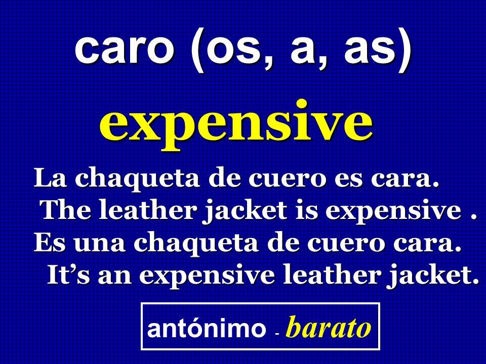 expensive caro (os, a, as) La chaqueta de cuero es cara.