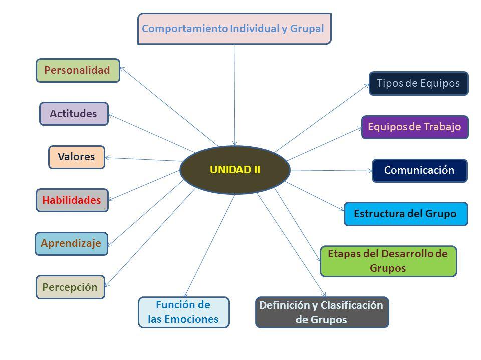 Etapas del Desarrollo de Grupos Definición y Clasificación de Grupos