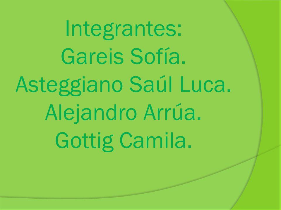 Integrantes: Gareis Sofía. Asteggiano Saúl Luca. Alejandro Arrúa