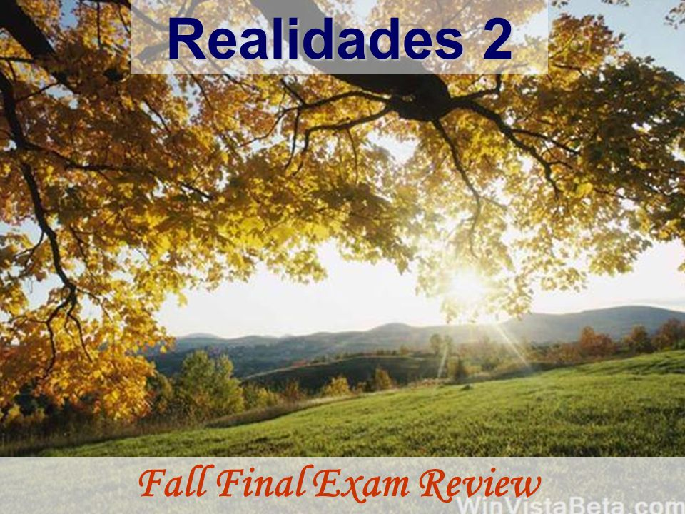 Realidades 2 Fall Final Exam Review