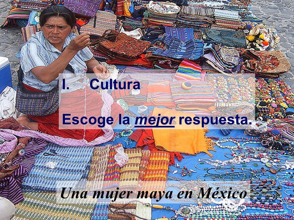 Una mujer maya en México