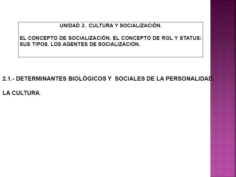 UNIDAD 2. CULTURA Y SOCIALIZACIÓN.