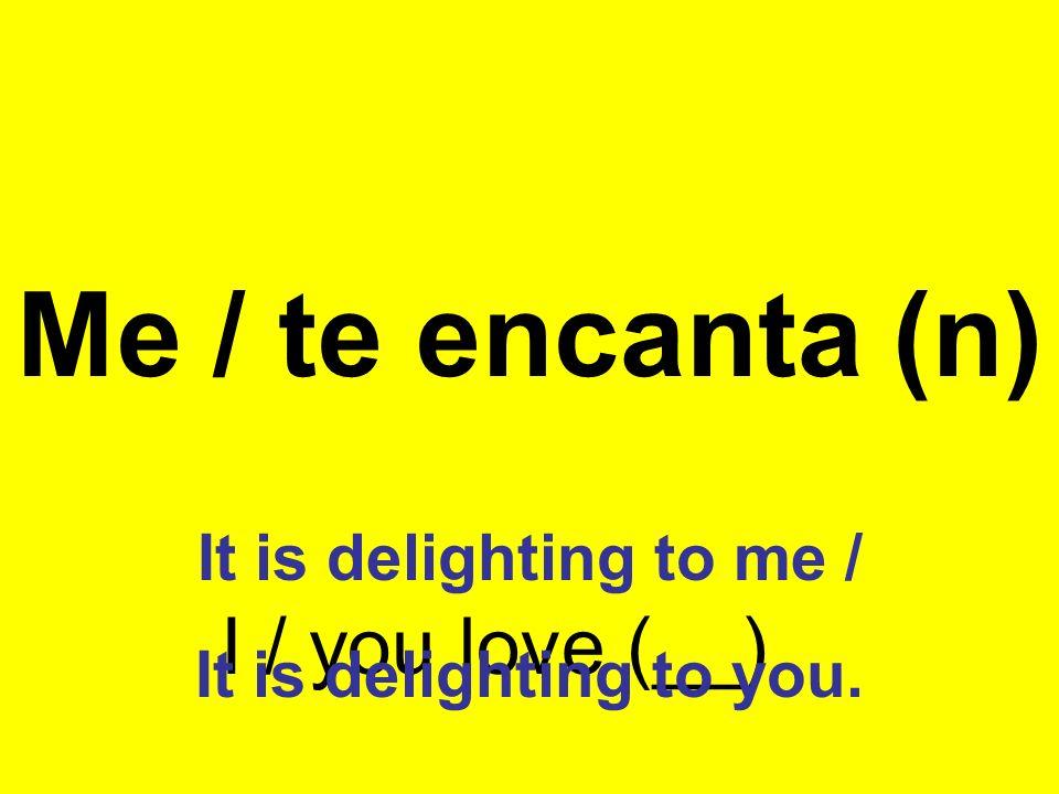 Me / te encanta (n) I / you love (__) It is delighting to me /