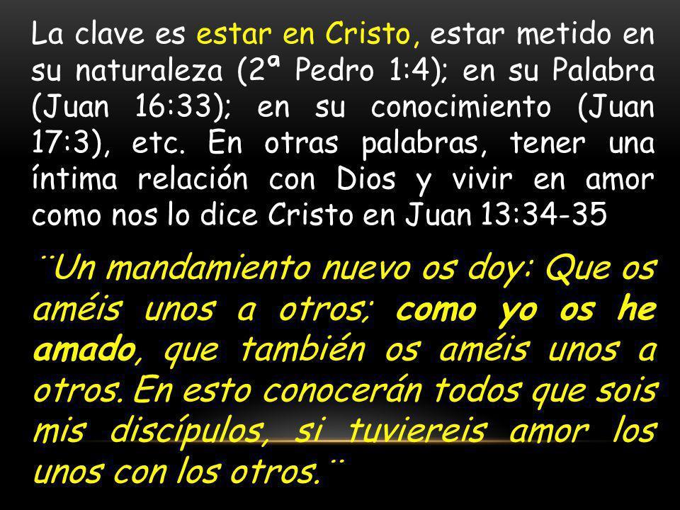 La clave es estar en Cristo, estar metido en su naturaleza (2ª Pedro 1:4); en su Palabra (Juan 16:33); en su conocimiento (Juan 17:3), etc. En otras palabras, tener una íntima relación con Dios y vivir en amor como nos lo dice Cristo en Juan 13:34-35