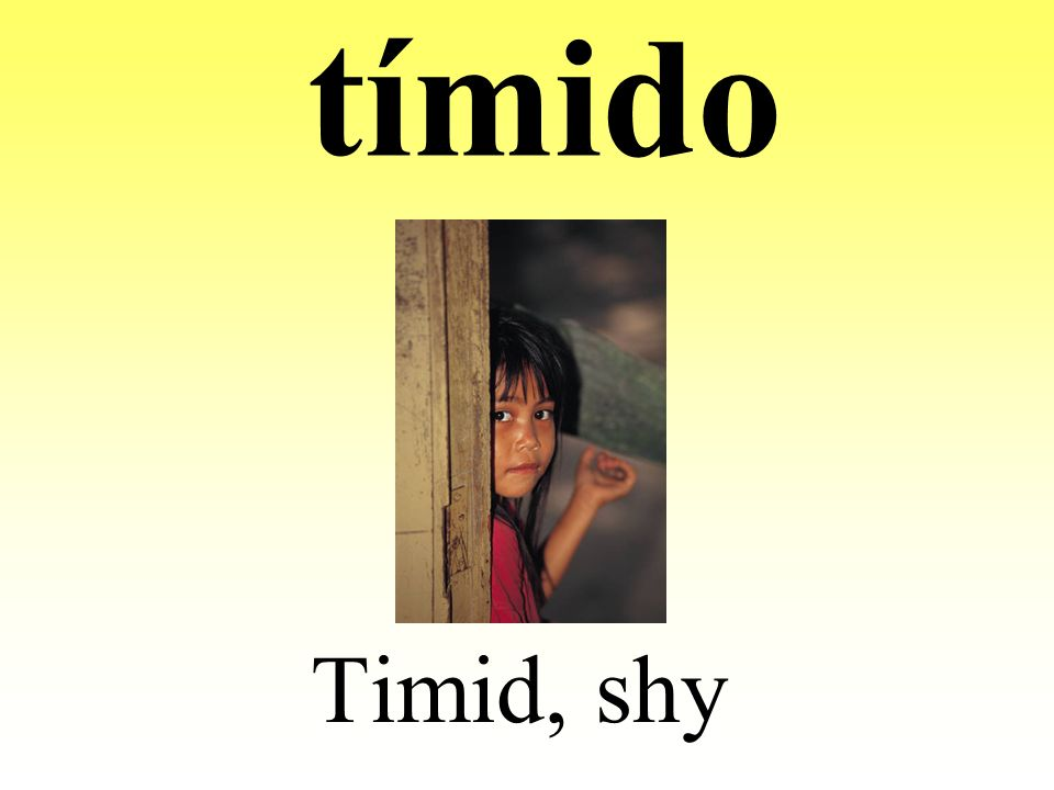 tímido Timid, shy