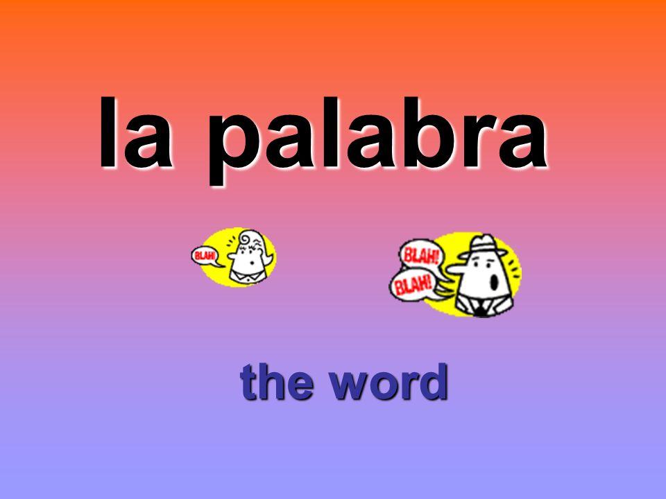 la palabra the word