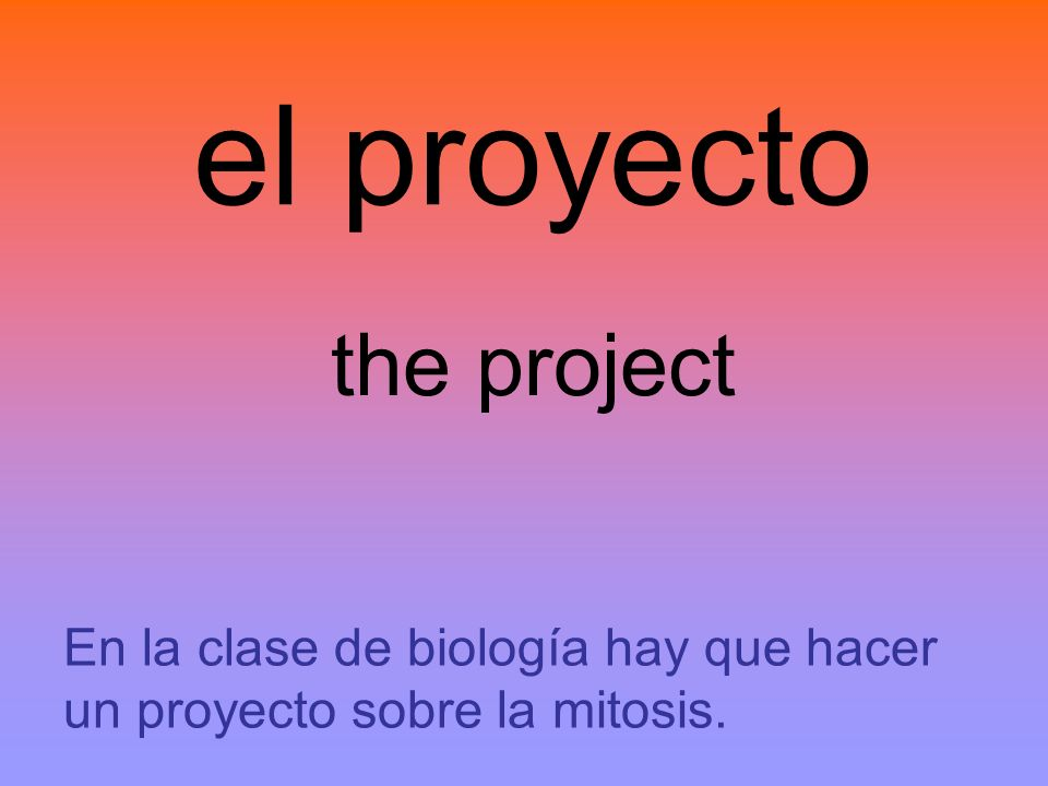 el proyecto the project