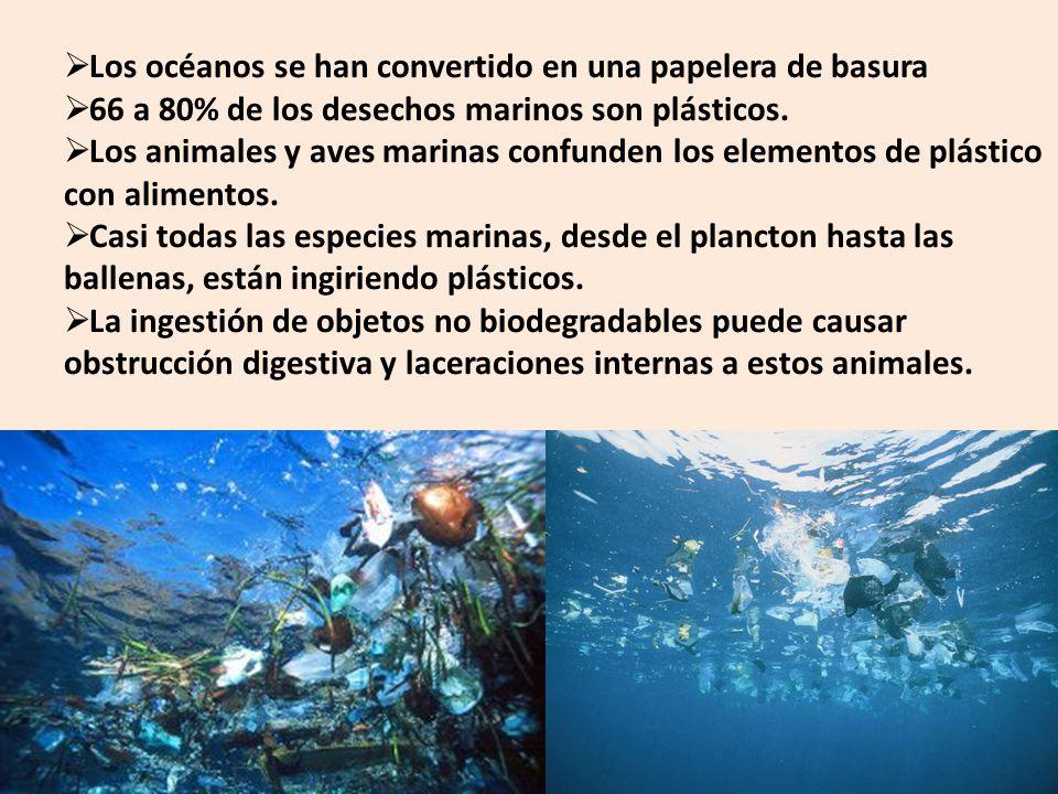 Los océanos se han convertido en una papelera de basura