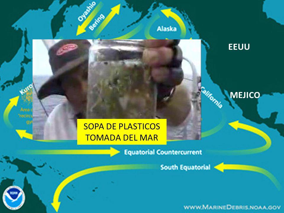 SOPA DE PLASTICOS TOMADA DEL MAR