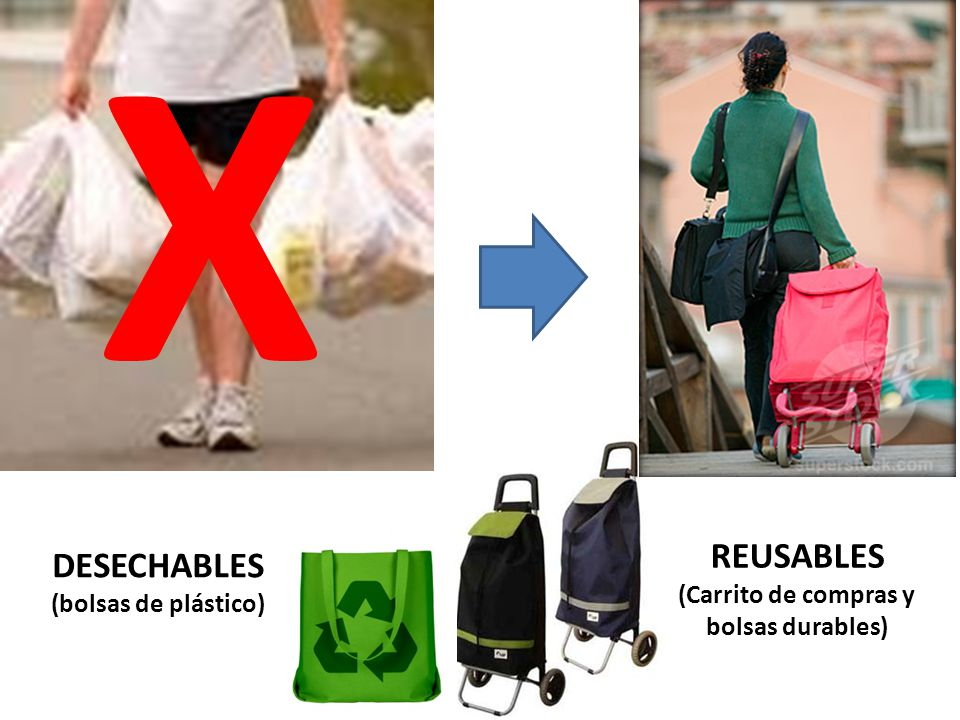 (Carrito de compras y bolsas durables)