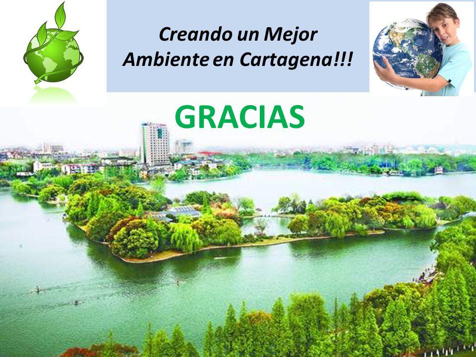 Creando un Mejor Ambiente en Cartagena!!!