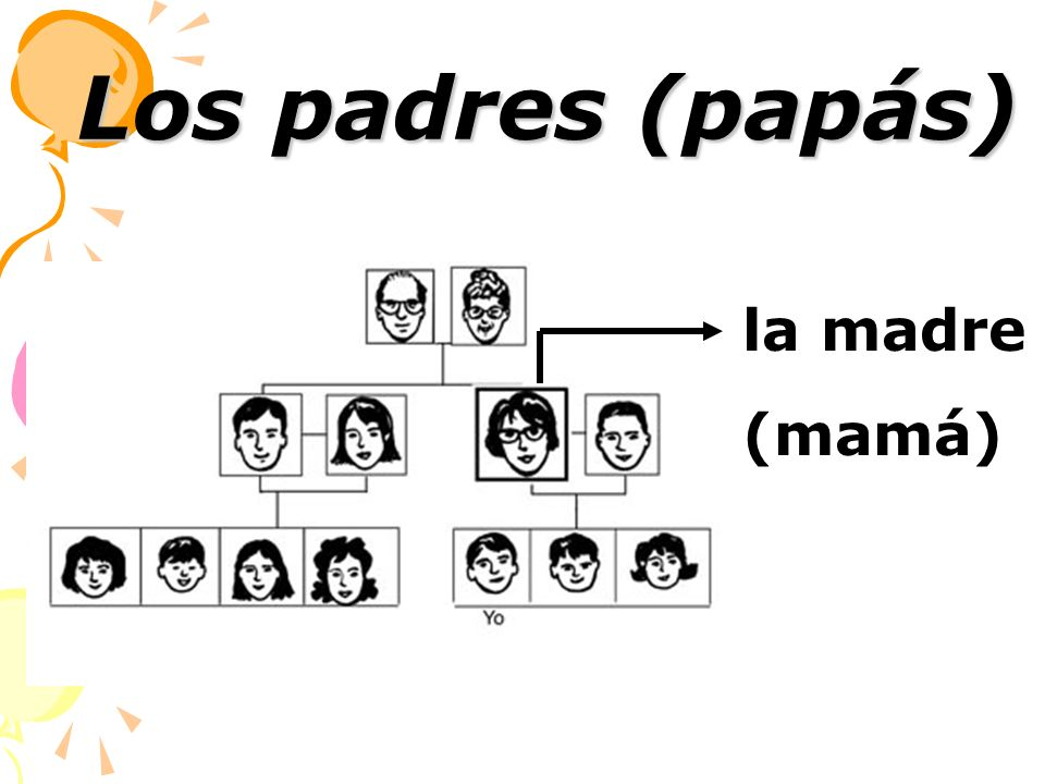 Los padres (papás) la madre (mamá)