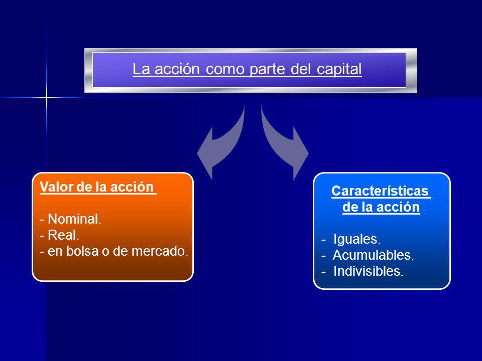 La acción como parte del capital