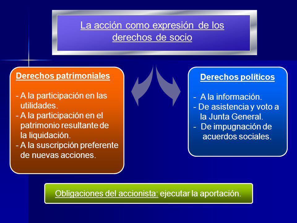 La acción como expresión de los derechos de socio