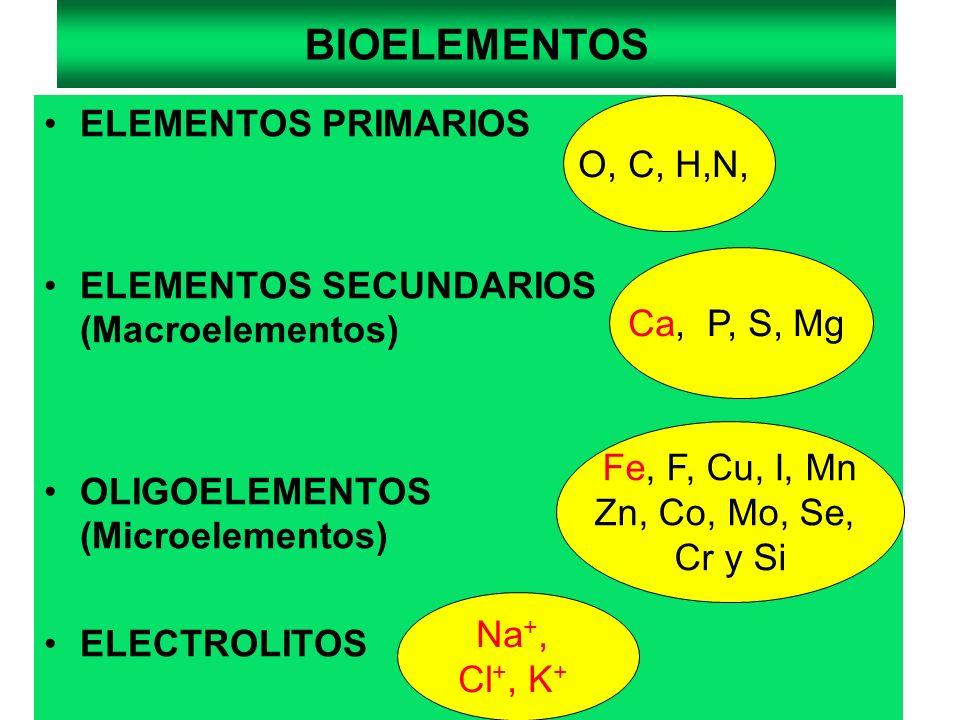 BIOELEMENTOS ELEMENTOS PRIMARIOS O, C, H,N,