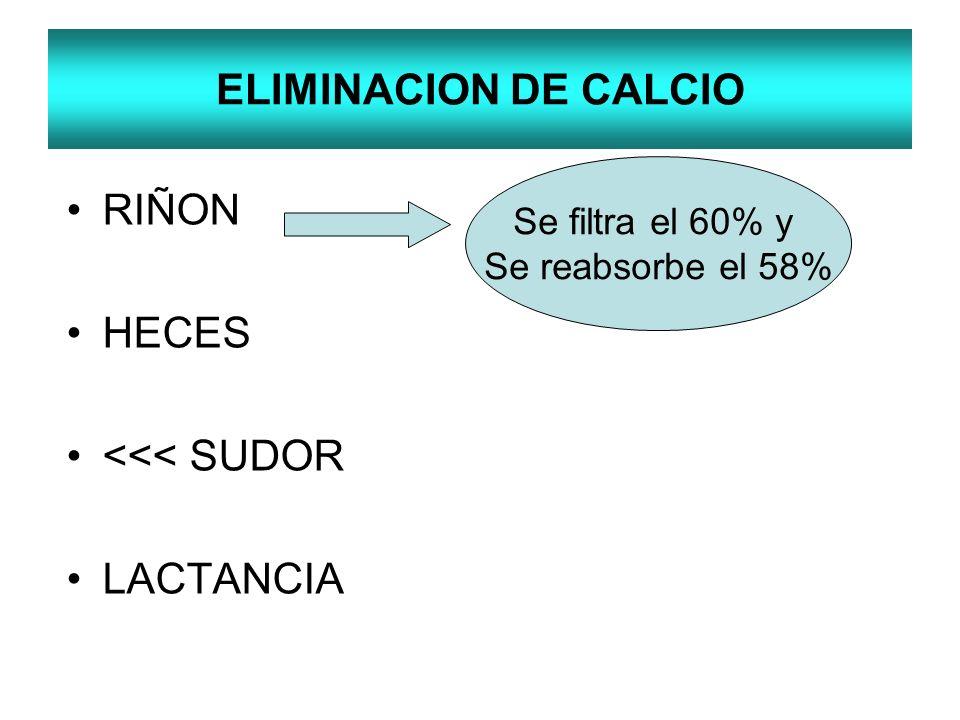 ELIMINACION DE CALCIO RIÑON HECES <<< SUDOR LACTANCIA