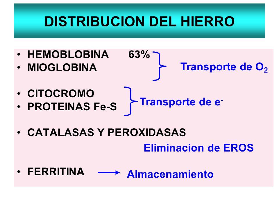 DISTRIBUCION DEL HIERRO