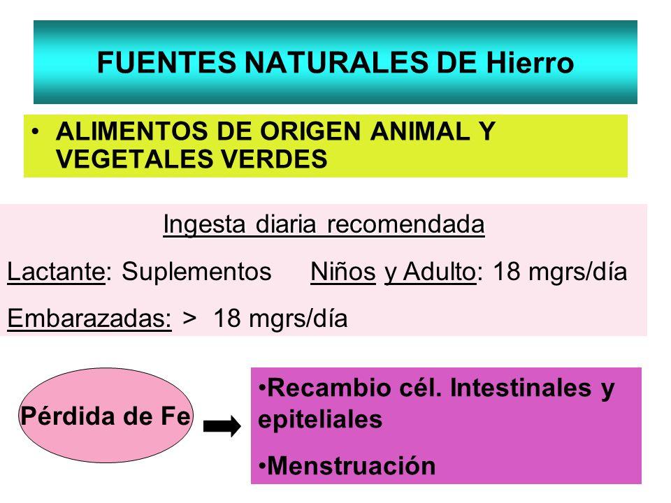 FUENTES NATURALES DE Hierro