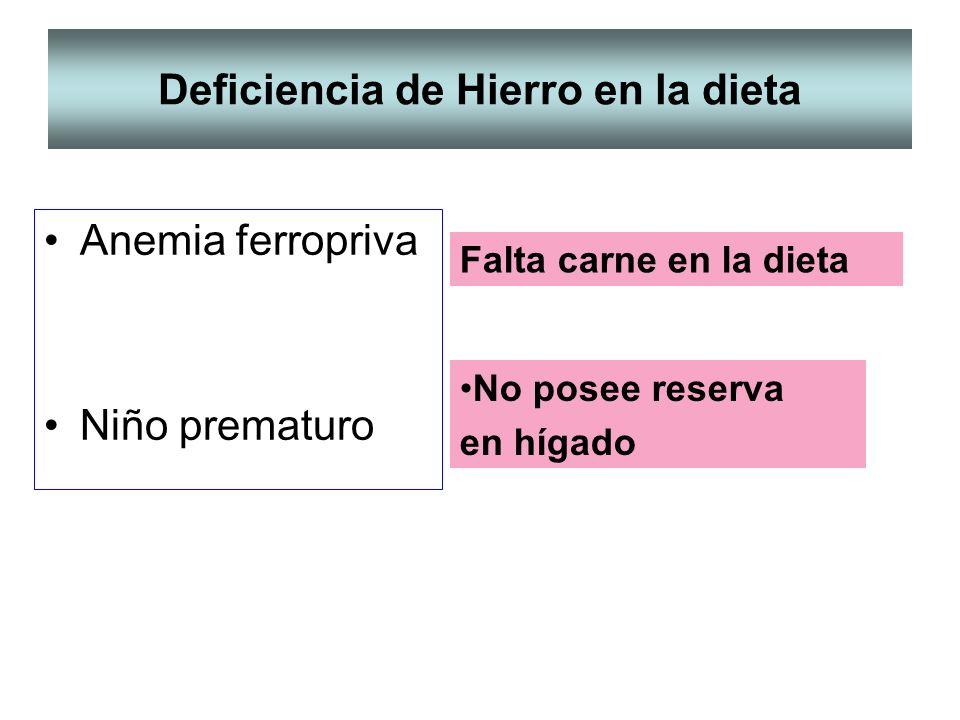 Deficiencia de Hierro en la dieta