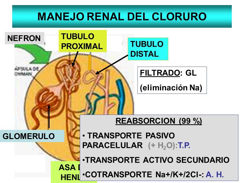 MANEJO RENAL DEL CLORURO