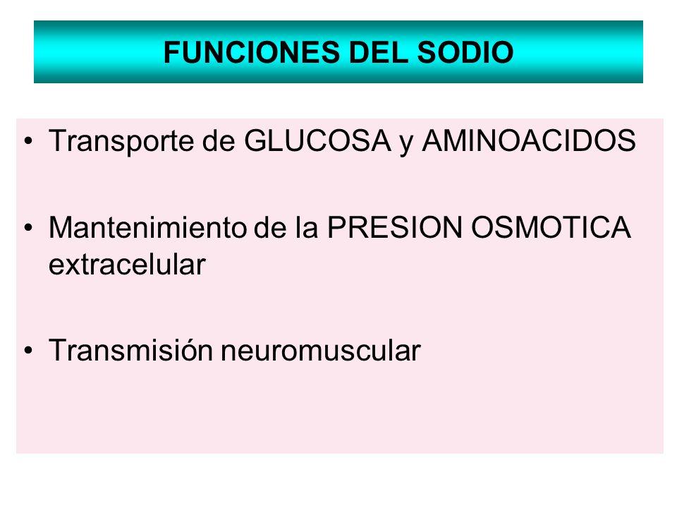 FUNCIONES DEL SODIO Transporte de GLUCOSA y AMINOACIDOS. Mantenimiento de la PRESION OSMOTICA extracelular.