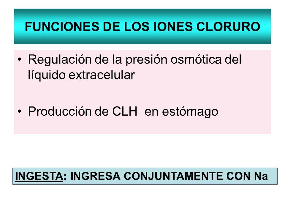 FUNCIONES DE LOS IONES CLORURO