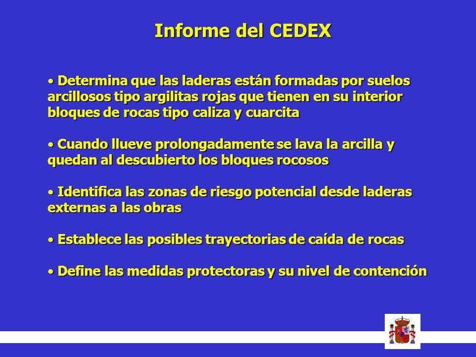 Informe del CEDEX