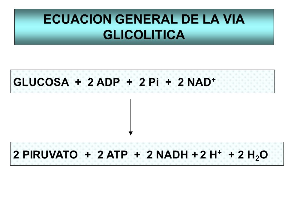ECUACION GENERAL DE LA VIA GLICOLITICA