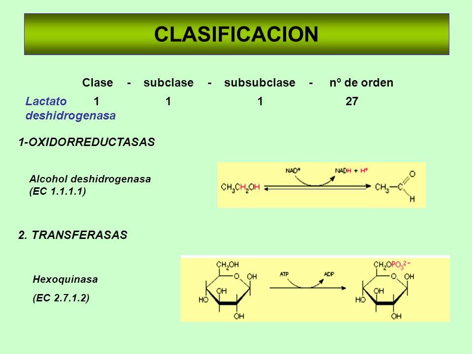 Clase - subclase - subsubclase - nº de orden