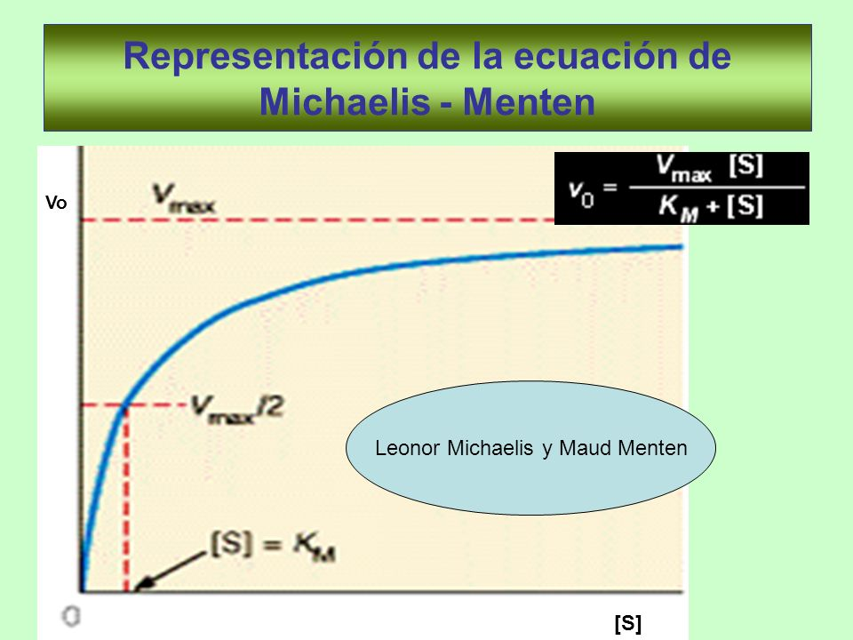 Representación de la ecuación de Michaelis - Menten