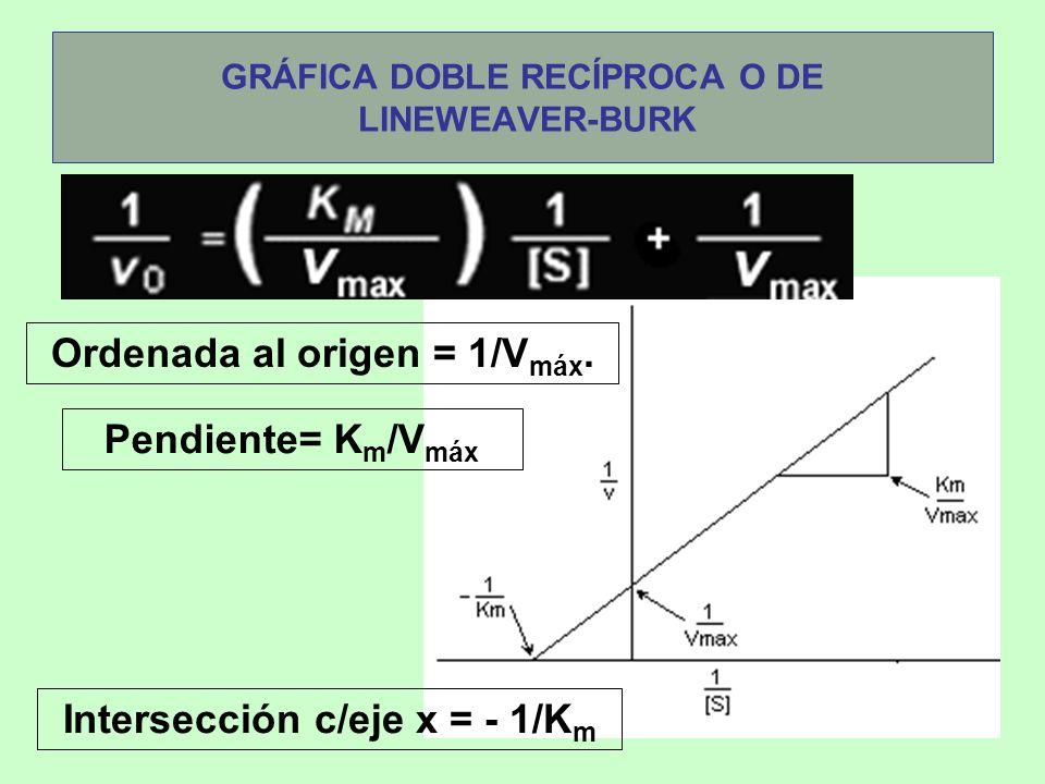 GRÁFICA DOBLE RECÍPROCA O DE LINEWEAVER-BURK