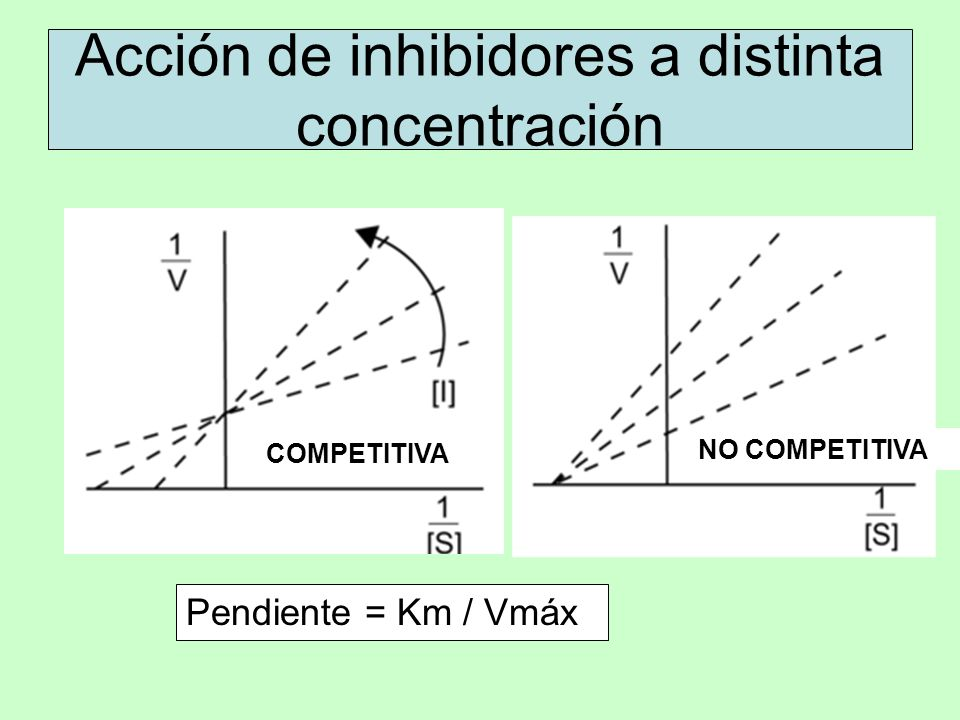 Acción de inhibidores a distinta concentración